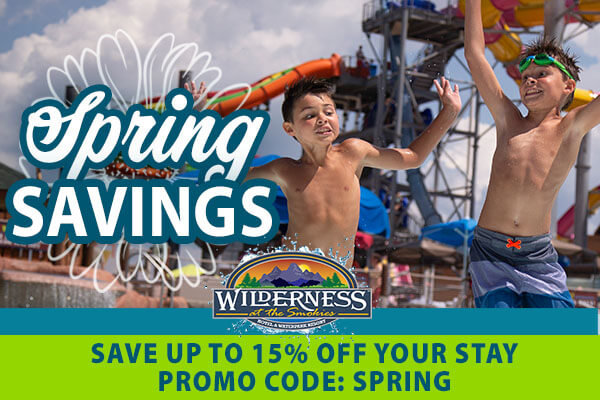 Spring Savings Save up to 15% off your stay promo code spring